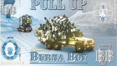 Burna Boy Latest Single is Out 'Pull Up'