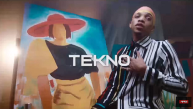 Tekno Ft. Stonebwoy – Love Station